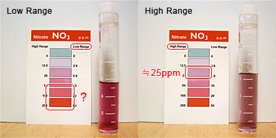 ヒゲゴケ処理バケツの硝酸塩濃度