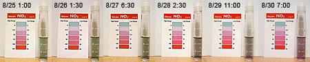 ライブロチェック:リハーサル7日間の硝酸濃度推移