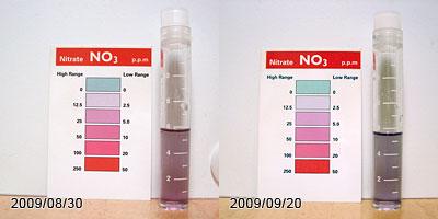 ライブチェックリハーサル2巡目を3週間放置した硝酸塩の変化