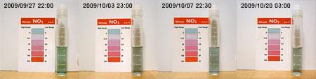 ライブロリハの硝酸塩の推移