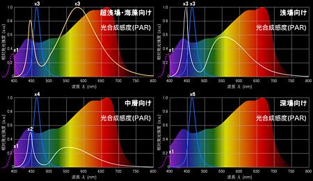 海洋生物の光合成を考慮したランプの仕様案