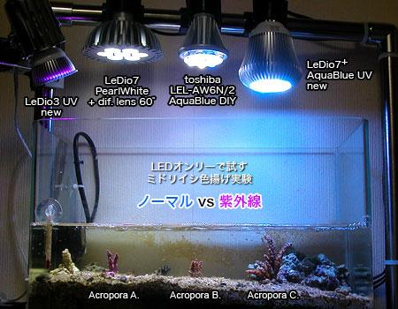 紫外線LEDの実験水槽