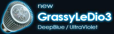 新GrassyLeDio3
