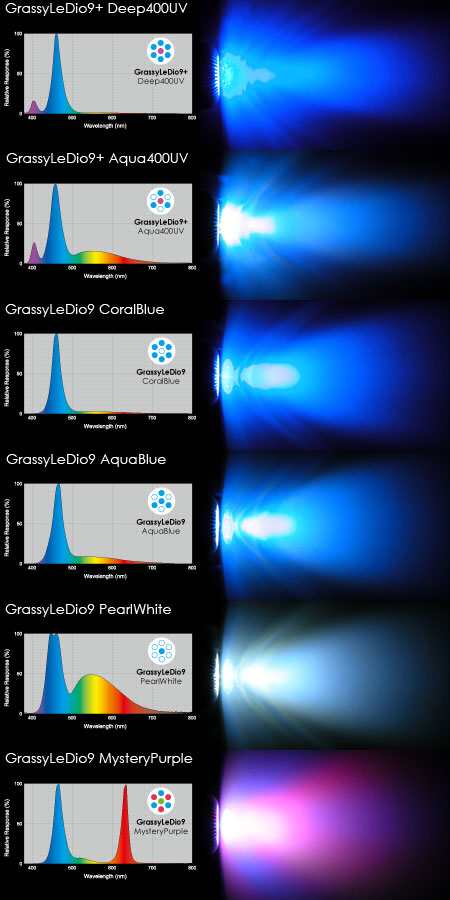 新Grassy LeDio 9シリーズの分光スペクトルと配光