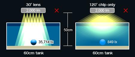 LEDシステム照明の残念賞