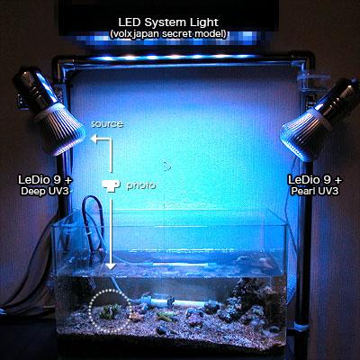 新LeDio 9と丸秘LED照明で新セッティング