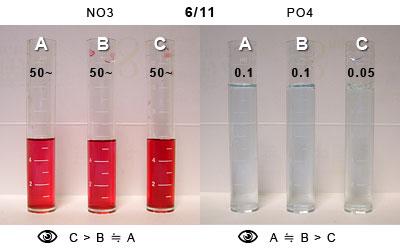 6/11の水質比較