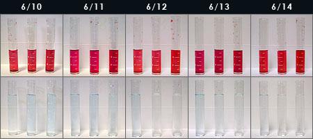 バイオペレット実験2日目~6日目の水質変化