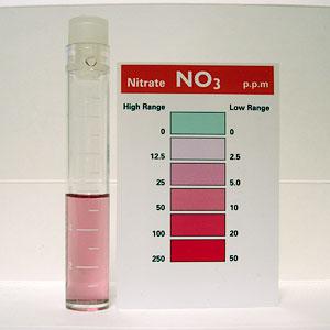 バイオペレット実験3の開始時の硝酸塩