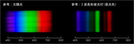 参考スペクトル