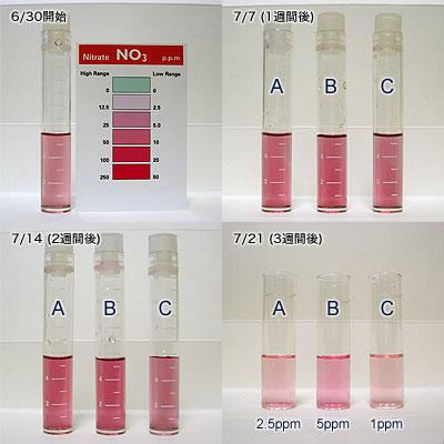 バイオペレット実験3の4週間の硝酸塩推移