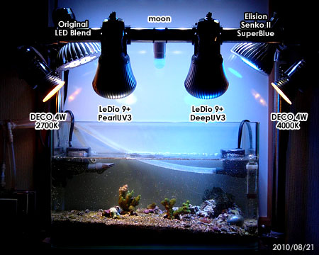 最新の水槽照明状況