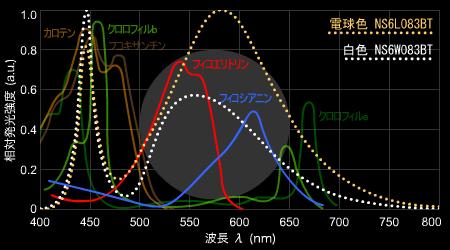日亜LEDスペクトルと光合成色素吸収スペクトル