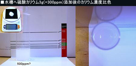 5L水槽へ硫酸カリウムを3g入れた際のカリウム濃度