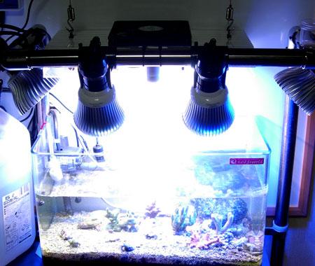 水槽に仮設置した太陽光スペクトルLEDシステム照明デモ機