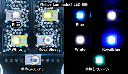 Vertex Illumina 素子発光色