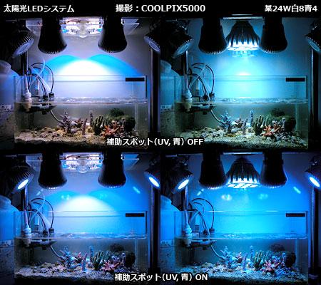 太陽光LEDシステムと一般LEDとの発色の違い(COOLPIX5000撮影)