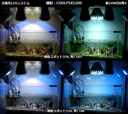 太陽光LEDシステムと一般LEDとの発色の違い(COOLPIX5200撮影)