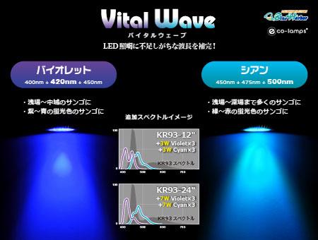 バイタルウェーブ:配光と追加例