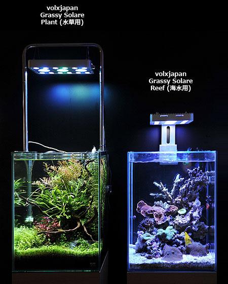 Grassy Solare Plant/Reef 設置イメージ
