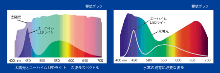 エーハイムLEDのスペクトル
