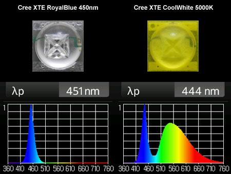 Cree XT-E RoyalBlueとCoolWhiteのスペクトル