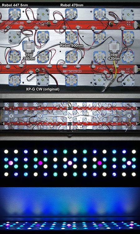 Maxspect G2 Cree 230W ハイパワーフルスペ実装例