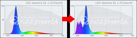 Vertex Illuminaスペクトル案
