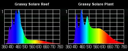 Grassy Solare 実測スペクトル