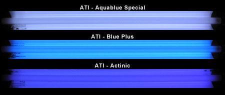 ATI T5ランプ 光色