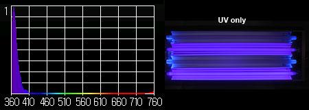 T5 UV大作戦:スペクトル UVのみ
