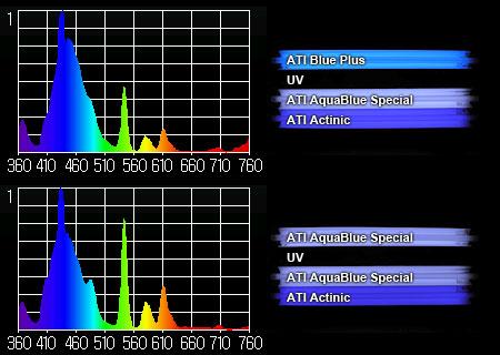 T5 UV大作戦:スペクトル