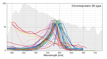 代表的な色素タンパクの吸収波長