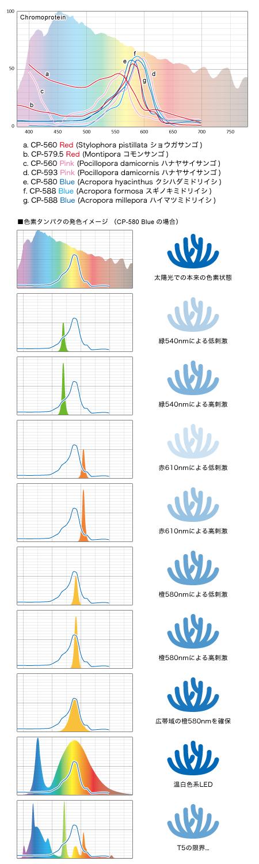 CP-580 Blueの場合の波長毎の発色イメージ