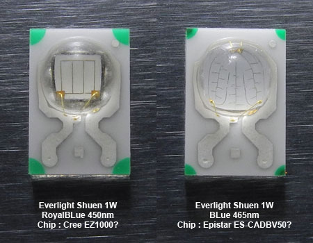 Everlight LED Chip