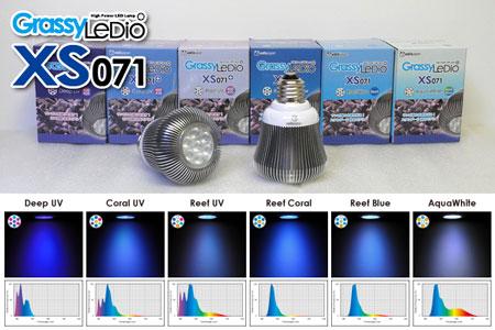 LeDio XS071新発売