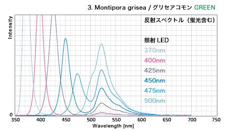 グリセアコモン・蛍光グリーン 反射スペクトル