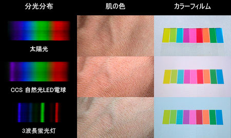 光源による色の見え方と演色性