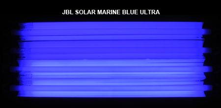 JBL SOLAR MARINE BLUE ULTRA 発光色