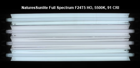 NaturesSunlite Full Spectrum 5500K 発光色