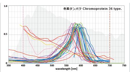 サンゴの色素タンパク36種の吸収スペクトル