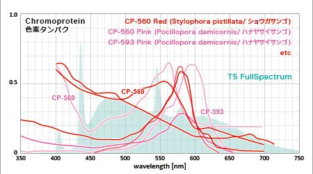 赤い色素タンパクの吸収スペクトルと一般T8のフラットスペクトル