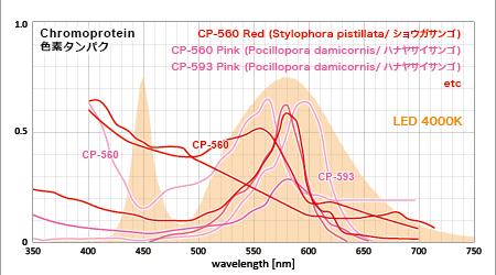 赤い色素タンパクの吸収スペクトルと温白色LED 4000Kのスペクトル