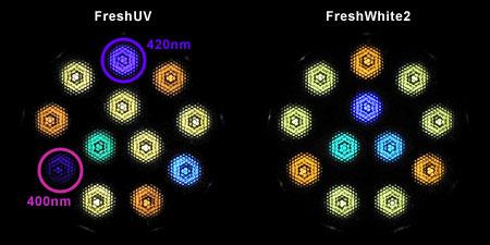 Freshシリーズ:LED