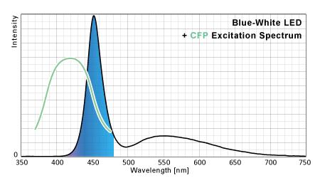 青白LEDのシアン蛍光タンパク励起ポテンシャル