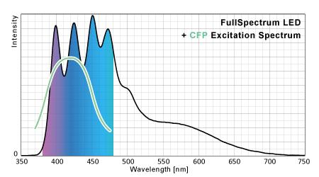 フルスペクトルLEDのシアン蛍光タンパク励起ポテンシャル