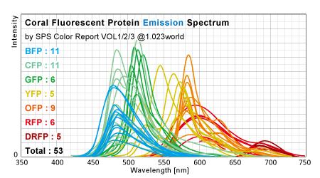サンゴ蛍光タンパク発光スペクトル