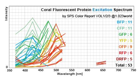 サンゴ蛍光タンパク励起スペクトル