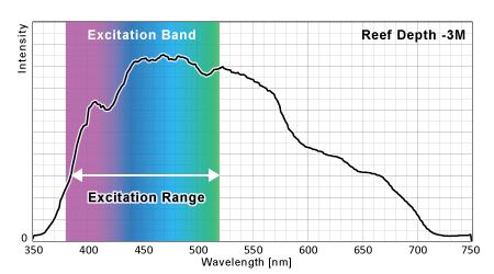 グレートバリアリーフ水深3Mの蛍光励起ポテンシャル