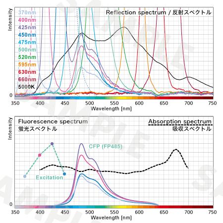 反射スペクトルの調査結果
